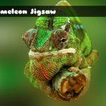 Chameleon Jigsaw