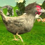 Chicken Shooting