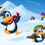 Cute Penguin Slide