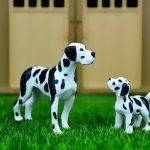 Domestic Animals Jigsaw