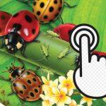 Ladybug Clicker