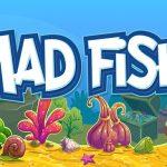 Mad Fish