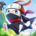 Ninja Rabbit