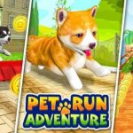 Pet Run Adventure Puppy Run