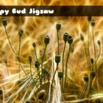 Poppy Bud Jigsaw