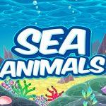 Sea Animals HD