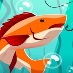 Sea Water Fishing