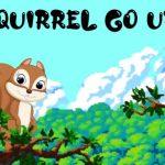 Squirrel Go Up