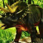 Triceratops Dinosaur Puzzle