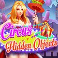 Circus Hidden Objects